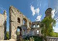 Ruine Falkenstein 7995 Panini 11.jpg