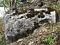 Ruine Lägelen (Wagenburg), Donautal 11.JPG