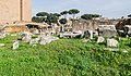 Ruins of tabernae novae (1).jpg