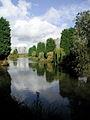 Rush Lyvars Fishing Lake Hedon.jpg
