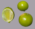 Rutaceae Fruits.png
