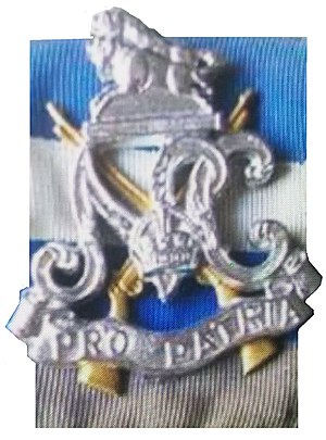 Natal Carbineers - Image: SADF Natal Carbineers beret badge with backing