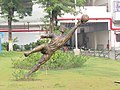 Salt Lake Stadium, Vivekananda Yuba Bharati Krirangan (VYBK)- Kolkata - IRCTC 2017 (32).jpg