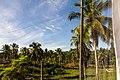 Samaná Province, Dominican Republic - panoramio (48).jpg