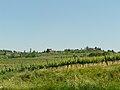 San Gimignano-panorama da Racciano1.jpg