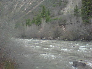 San Miguel River (Colorado)