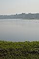 Santragachi Lake - Howrah 2013-01-25 3590.JPG