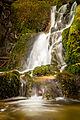 Sasbachwalden Gaishöll Wasserfälle (14801253975).jpg