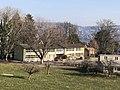 Schulhaus Lee2.jpg