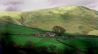 Scottish farm.jpg