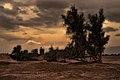 Shahdad desert 01.jpg
