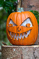 Sharp Teeth Pumpkin (21777624893).jpg