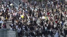 Bestand: Shibuya Crossing, Tokio, Japan (video) .webm