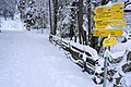 Ski Touren Strecke zur Kaiserburg, Bad Kleinkirchheim, Kärnten.jpg