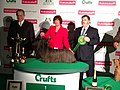 Skye terrier crufts 2013 group winner.jpg