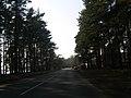 Slokas iela - panoramio (37).jpg