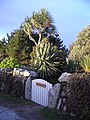 Smugglers' Cottage Gate, Tresco - geograph.org.uk - 1766153.jpg