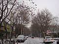 Snow in Beijing - panoramio (1).jpg