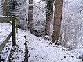 Snowy path, Dromore - geograph.org.uk - 1632462.jpg