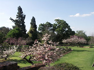 Johannesburg Botanical Garden - The Rose Garden in the Johannesburg Botanical Garden