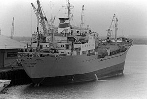 Soviet tanker Novotroizk.JPEG