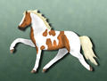 Spotted Saddle Horse 1.png