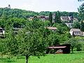 Stühl. Altstadt-Schloss.jpg