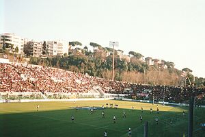 Football at the 1960 Summer Olympics - Image: Stadio Flaminio a Roma