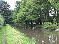 Staffordshire and Worcestershire Canal, Tixall, Staffordshire - geograph.org.uk - 553382.jpg