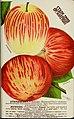 Stark fruits (1896) (20358127739).jpg