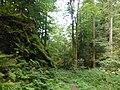 Steintal Lautenbach (Gernsbach).jpg