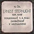 Stolperstein für Ernest Sternlicht.jpg