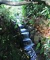 Stream Garden Trengwainton 1 (280058150).jpg
