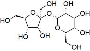 A representation of the structure of sucrose a...