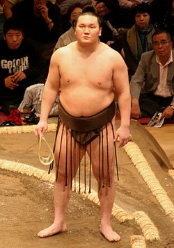 Sumo May09 Hakuho.jpg