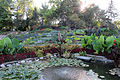 Sunken Gardens (inside 2), Lincoln, Nebraska, USA.jpg