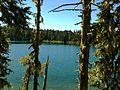 Takhlakh Lake between the Trees.JPG