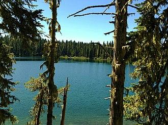 Takhlakh Lake - Takhlakh Lake between the Trees