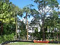 Tampa Stovall House01.jpg