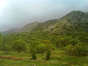Gachsaran County - Tange deel around the Gachsaran city, early spring