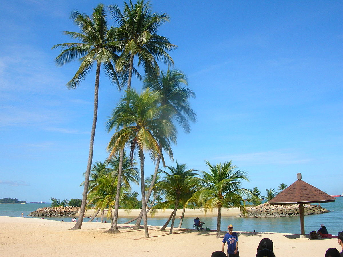 Palm Trees On The Beach: List Of Beaches In Singapore