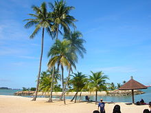 Singapore Pictures Beach on Beaches Of Singapore   Wikipedia  The Free Encyclopedia