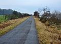Tarka Trail near Barnstaple.jpg