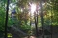 Tarnogórski park miejski.jpg