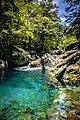 Taroko National Park Hehuan Creek Wang Ta-Chih 025.jpg