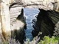 Tasmanian Coast D1020084.jpg