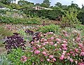 Terrace Garden at Upton House, Warwickshire - geograph.org.uk - 308611.jpg
