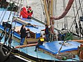 Thames barge parade - in the Pool - Gladys 6717.JPG