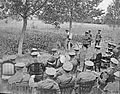 The Agriculture on the Western Front, 1914-1918 Q9028.jpg