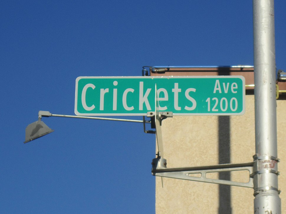 The Crickets Avenue, Lubbock, TX IMG 1641